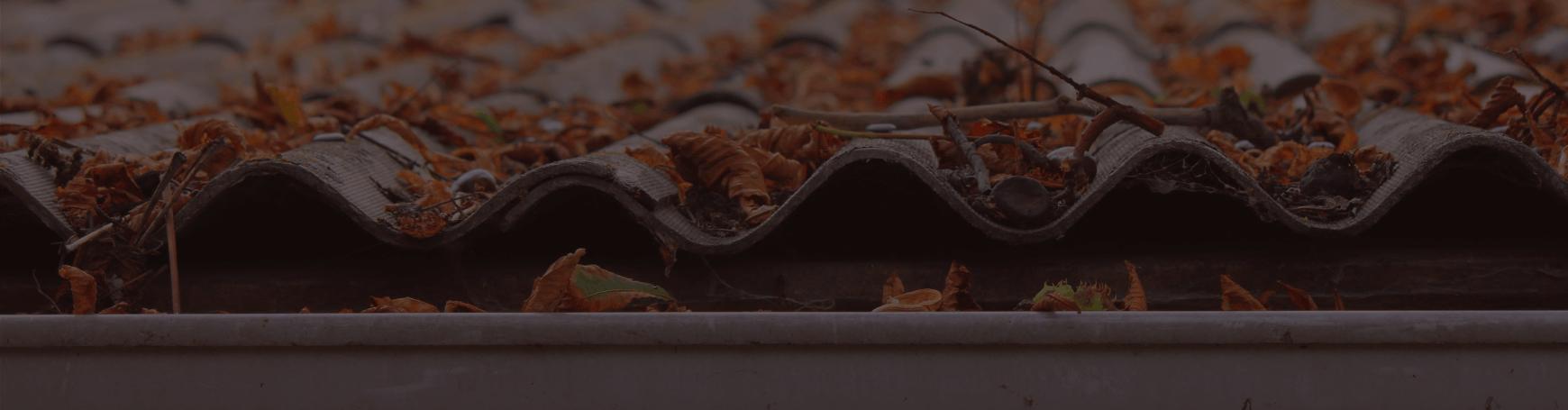 The Complete Winter Home Maintenance Checklist LP Banner -